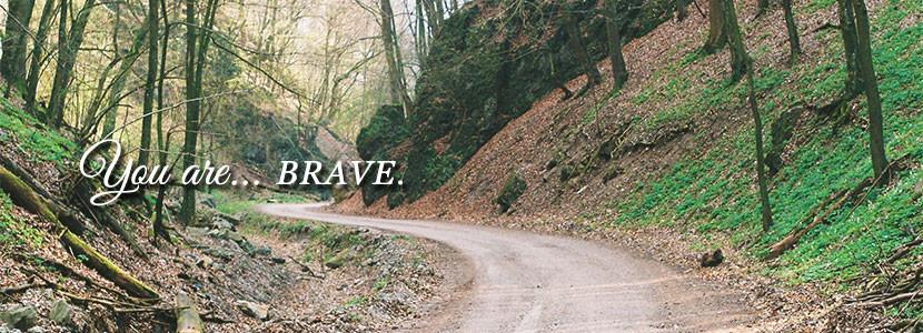 slide_Brave